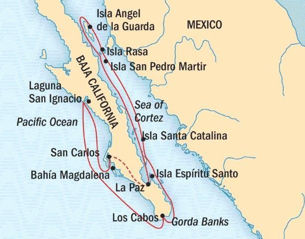 map of del mar california with Isla Rasa Paraiso Aves Migratorias 156171 on Playa Mismaloya moreover Scripps Clinic  scripps Clinic Del Mar additionally 550405846 together with Golfo De California Y Mar Caribe  C2 BFarrecifes De Coral En El Umbral De Su Extincion as well 83978.
