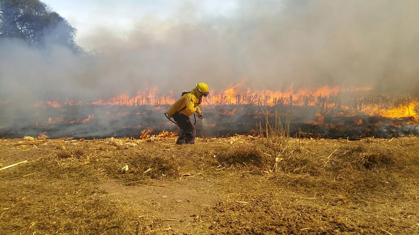 La primera causa de incendios forestales — Quemar basura