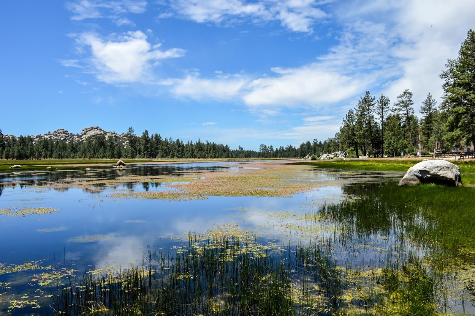 La Laguna Hanson se localiza en el Parque Nacional Constitución de 1857.