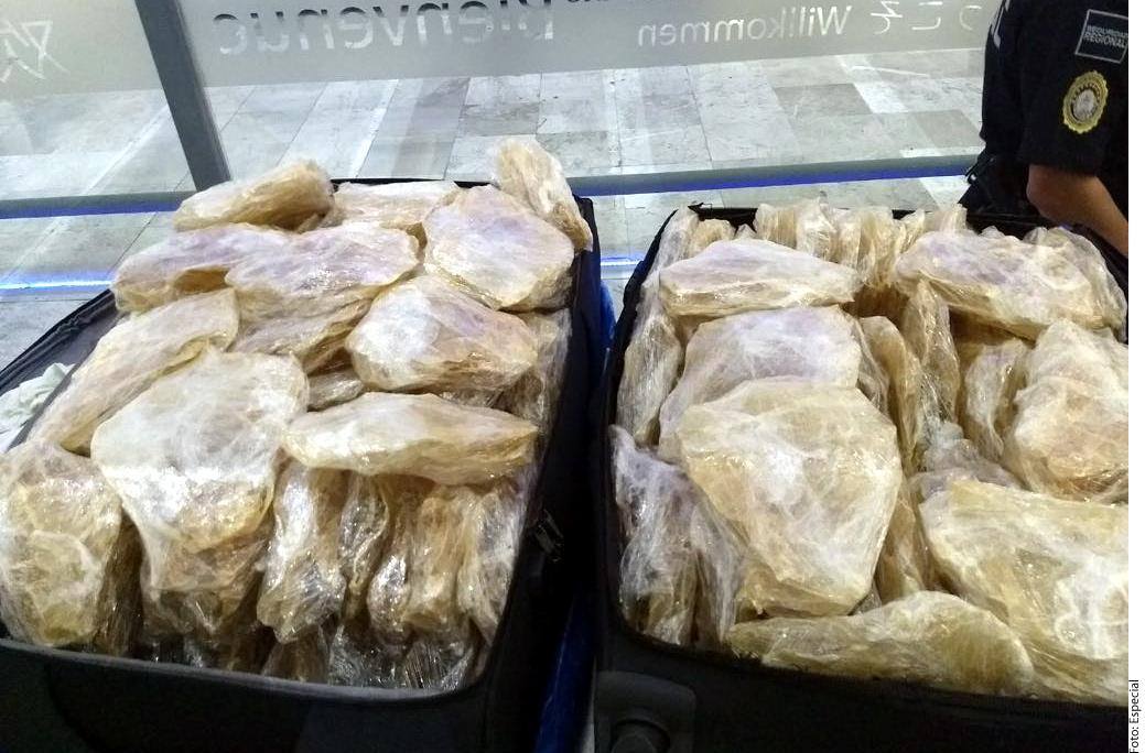 Procesan a extranjero detenido en posesión de vejigas de totoaba