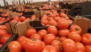 Crece agro en exportaciones