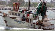 Disminuye un 11%  la pesca en 2015