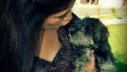 Invita Estado al cuidado permanente de mascotas