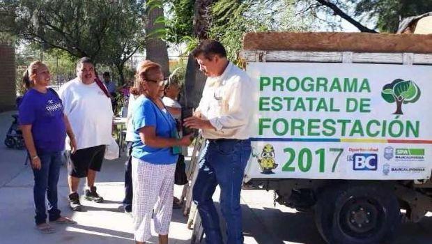 DONA GOBIERNO DEL ESTADO MÁS DE 8 MIL ÁRBOLES A BAJACALIFORNIANOS A TRAVÉS DEL  PROGRAMA ESTATAL DE FORESTACIÓN