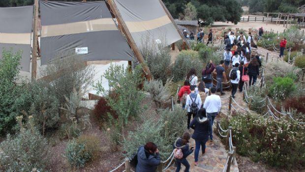 Fomentan el uso responsable de la etnobotánica en Baja California