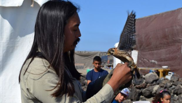 Organiza Terra Peninsular tercer Festival de las Aves