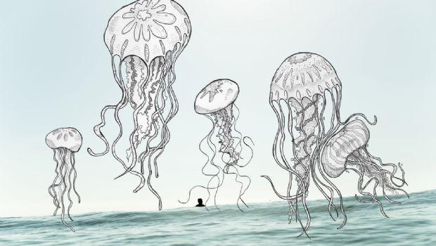 'Criaturas Marinas'