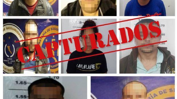 Detienen a 8 sujetos  por distintos delitos