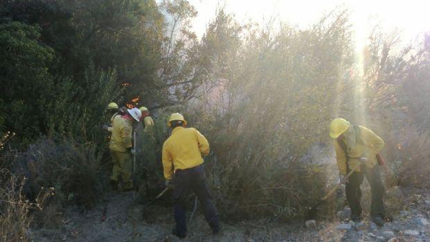Combaten brigadistas  incendio de La Mesa