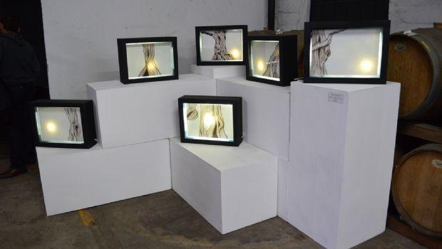 """Presentan """"Contraste"""" en la Sala de Blancos"""