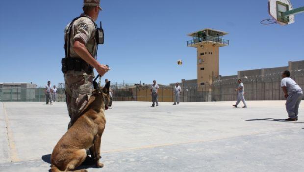 Reforzará SSPE seguridad en penales de BC con más custodios