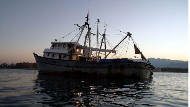 Multan a atunero por pescar en El Vizcaíno