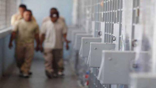Involucran a custodios en plan de fuga