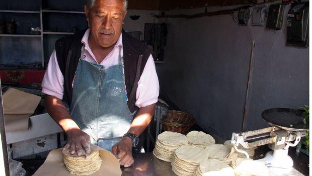 Impedirá Economía colusión en tortilla