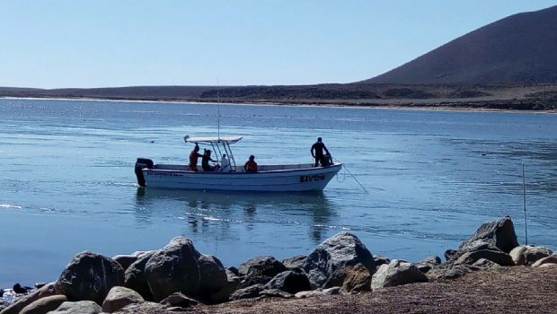 Cae pick up al mar;  fallece joven mujer