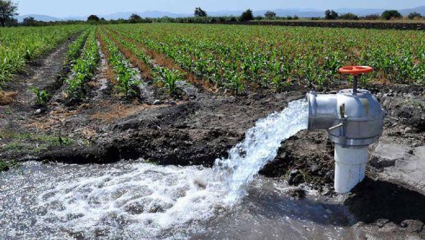 Definirá Conagua creación  de distrito de riego de agua