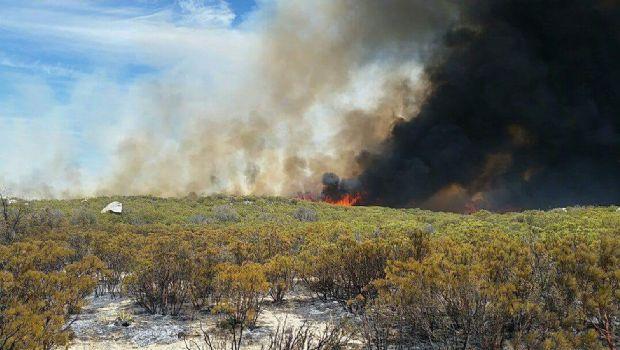 Combaten incendio en Sierra de Juárez