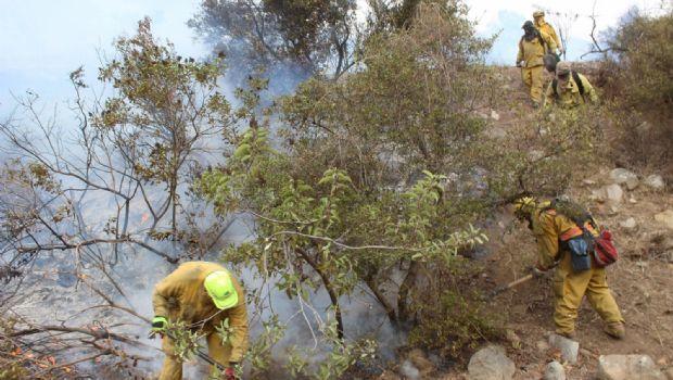 Liquidan incendios en San Pedro Mártir