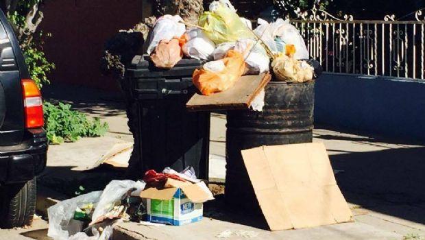 Piden a Marco Novelo atender tema de basura