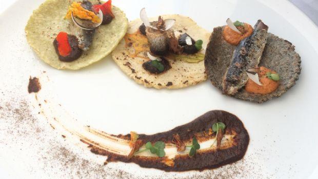 Celebran consumo de sardina nacional